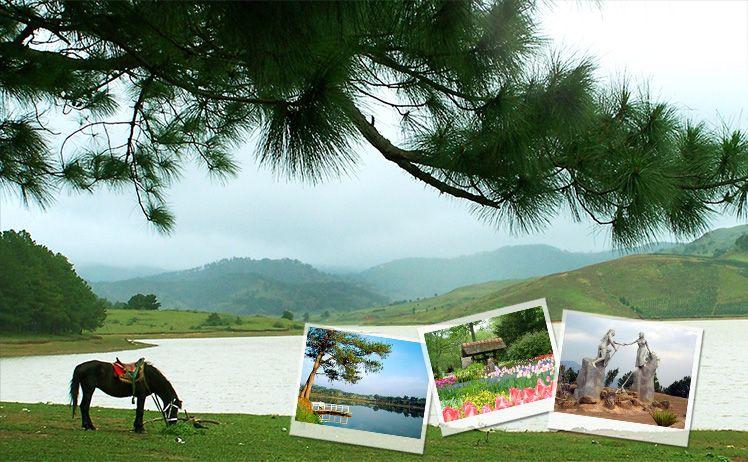 Biển Nha Trang & Hoa Đà Lạt